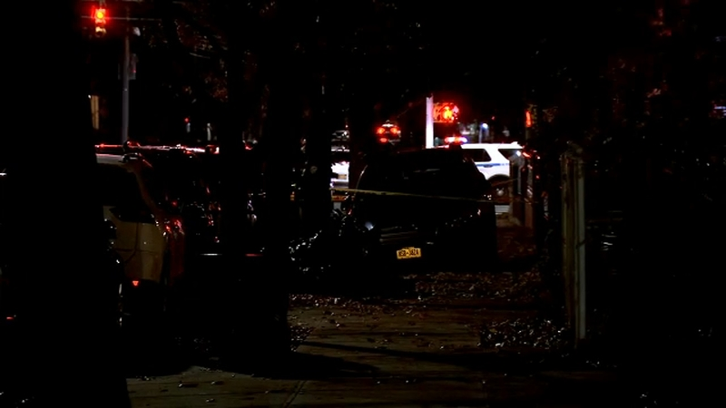 Stolen car with young kids inside crashes into Brooklyn tree